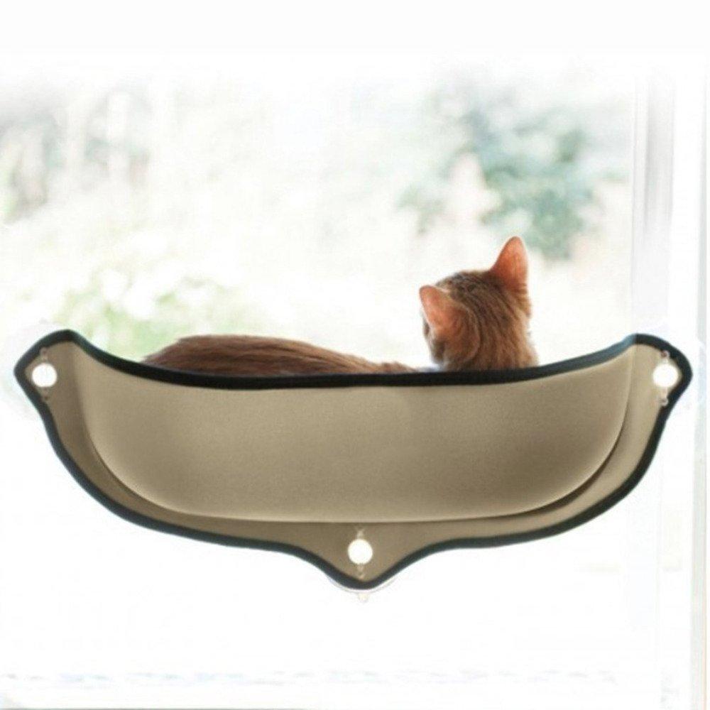 cat-hammock-7.jpg