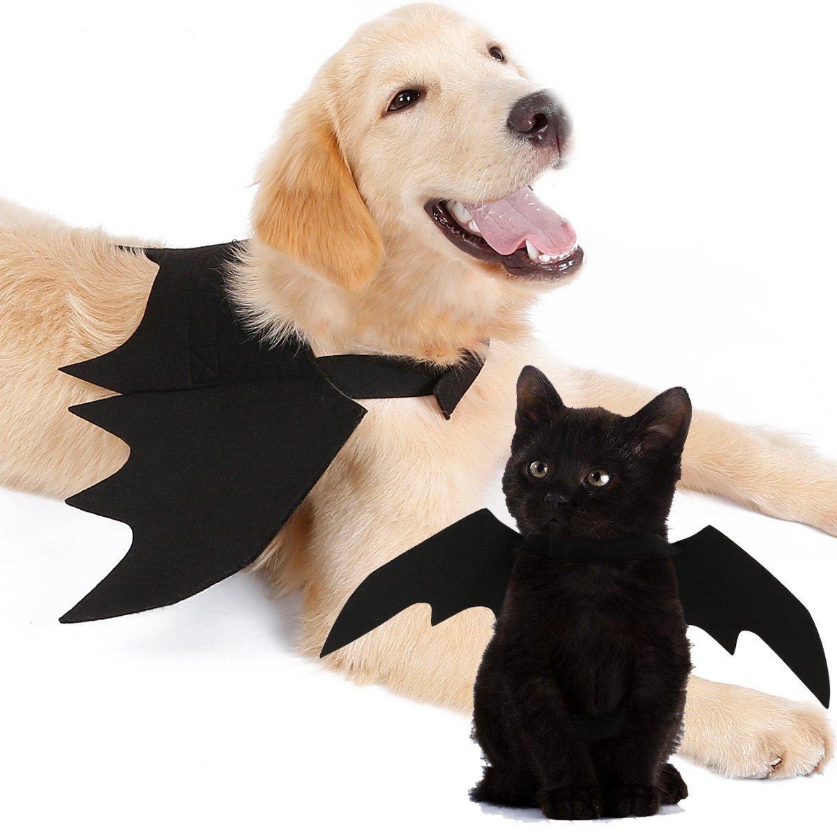 halloween pet bat wings 2